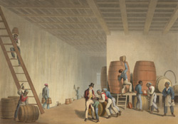Interior Of The Distillery, Antigua